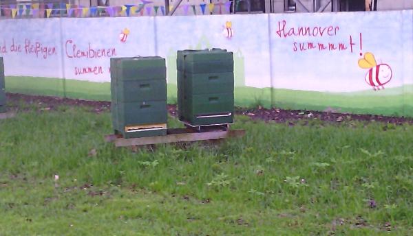 Bienenkurse/Imkerkurse 2020 in Hannover: Bienenstöcke Hartmut Münch mit Clemibienen im Clemipark des Clementinenkrankenhauses Hannover